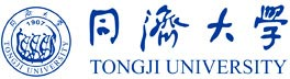 Tongji School of Economics and Management, Shanghai China